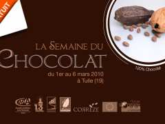 photo de Atelier de découverte du chocolat (adultes)